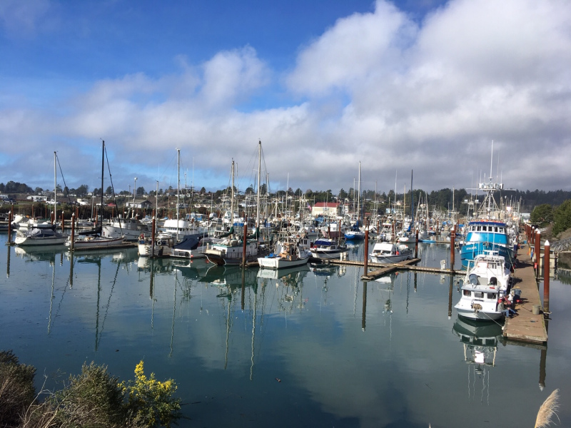 Port of Brooking-Harbor Crab Fishermen ready for Oregon Crab season 2019