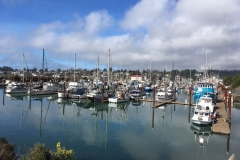 Port of Brooking-Harbor Crab Fishermen ready for Oregon Crab season 2019