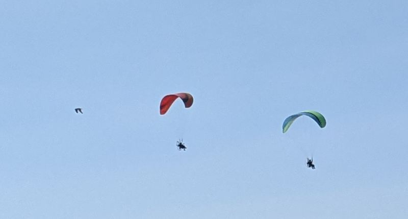 Motorized-Paragliders-above-Port-of-Brookings-boat-basin