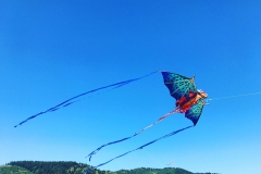 Annual Kite Festival at Port of Brookings-Harbor