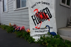 You've been FLOCKED! By a proud supporter of Brookings Harbor High School