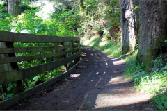 Samuel Dicken - Oregon Trail Natural bridges#4 at boardman