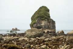 Sea stacks at Harris Beach | Only 2.5 miles from Ocean Suites Motel, Brookings, OR