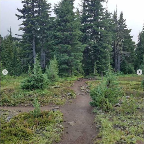 1_Sean-Nolan-PCT-Mt.-Jefferson-Mt.-Hood5