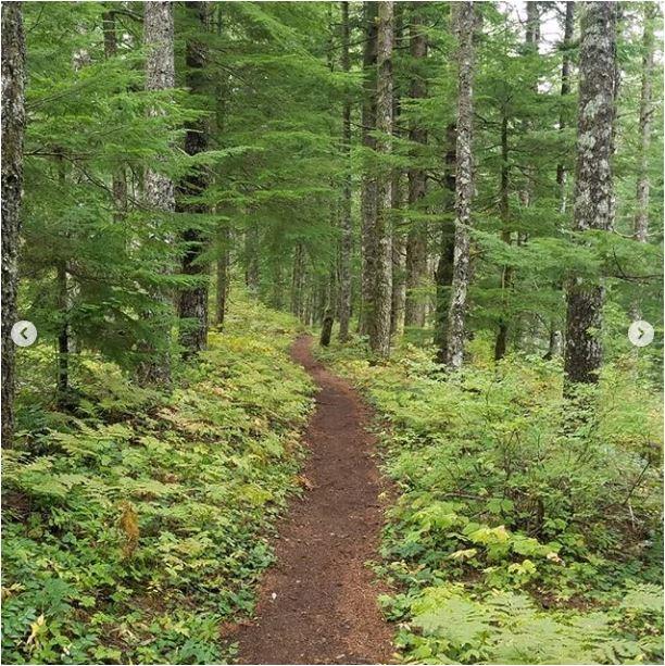 Sean-Nolan-PCT-Cascade-Locks-Oregon-2050-miles4