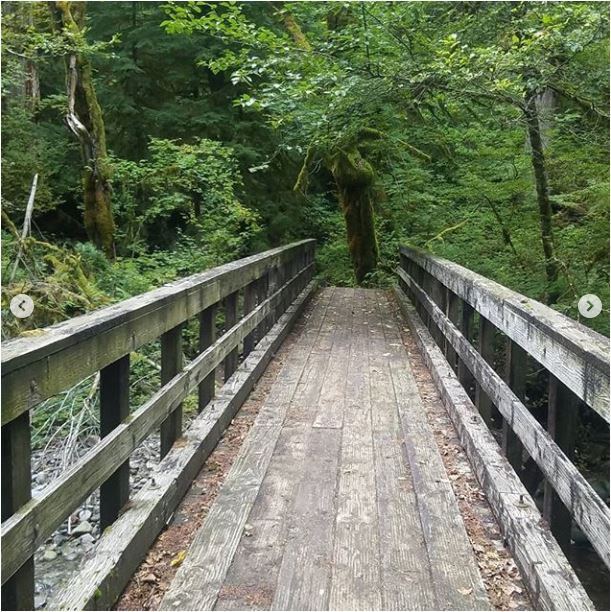 Sean-Nolan-PCT-Cascade-Locks-Oregon-2050-miles5