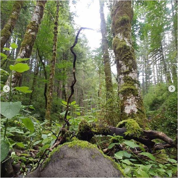 Sean-Nolan-PCT-Cascade-Locks-Oregon-2050-miles6