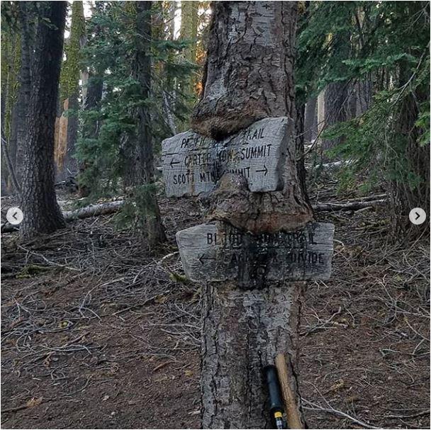 Sean-Nolan-PCT-passing-Mt.-Shasta-then-onto-Seiad-Valley3