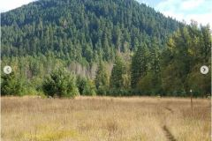 Sean-Nolan-PCT-Cascade-Locks-Oregon-2050-miles7
